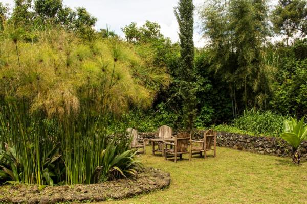 Virunga Lodge Garden
