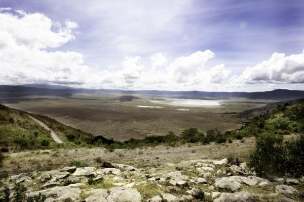 Stunning View of the Serengeti