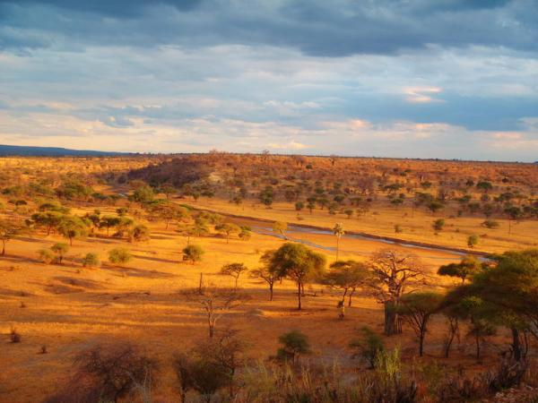 The beautiful African landscape at sunset.