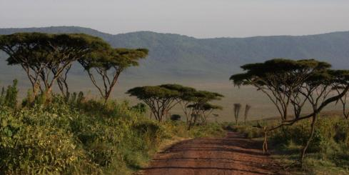 The unique landscape of Tanzania