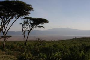 The beautiful landscape of Tanzania