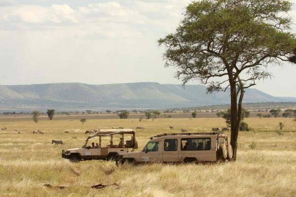 Take a safari ride to see an abundance of wildlife