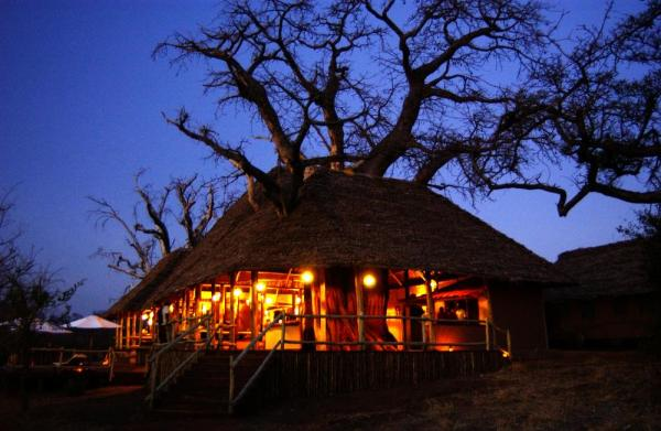 Tarangire Treetops Lodge at night