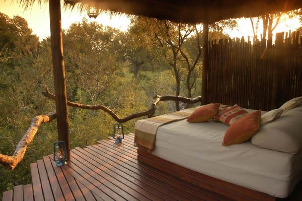 Enjoy the treetop rooms at the Simbambili Lodge