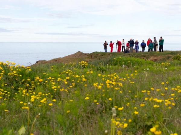 Hike on Grimsey Island