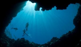 Swim the clear waters of Palau