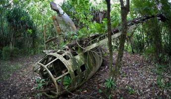 The wreckage of a Japanese Betty Bomber on the island of Yap