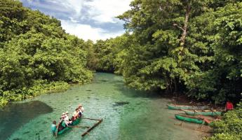 Explore the inlets of Vanuatu