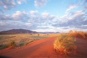 The beautiful red sands of the NamibRand Nature Reserve