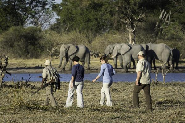 Walking safari in Botswana
