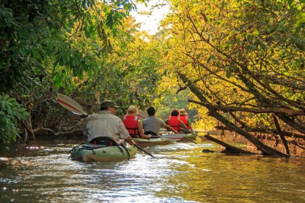 Explore the Amazon by kayak