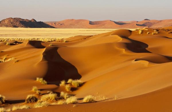 The beautiful desert landscape of Africa.