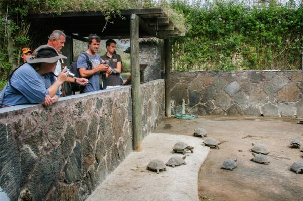 Learn at the Breeding Center on your Galapagos cruise