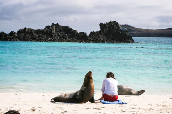 A Galapagos traveler sits still while a sea lion explores