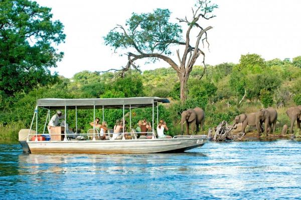 View a variety of wildlife while on a river boat cruise.
