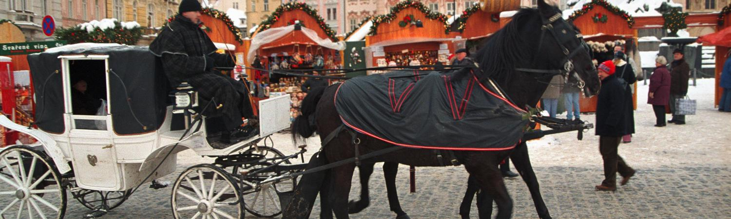 Enjoy a carriage ride at the Christmas Market
