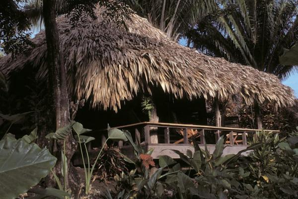 Lamanai Outpost Lodge offers thatched-rood accomodations