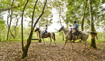 Horseback riding throught he jungle at the Lodge at Chaa Creek