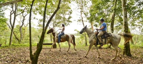 Horseback riding through the jungle at the Lodge at Chaa Creek