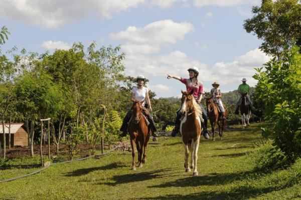 Tour the Chaa Creek Nature Reserve from horseback