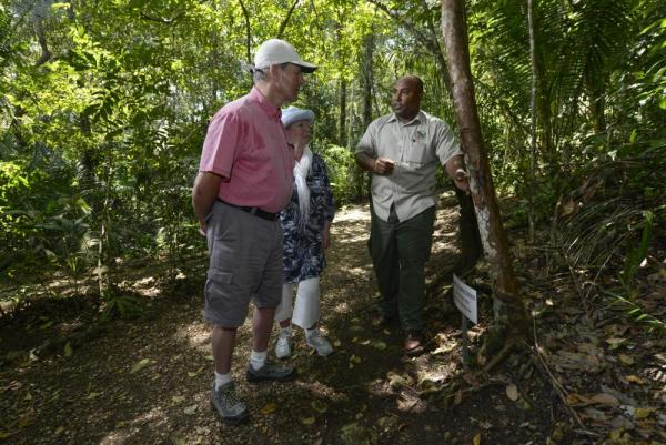 Visitors learn about the local habitat from one of Chaa Creek's experienced guide
