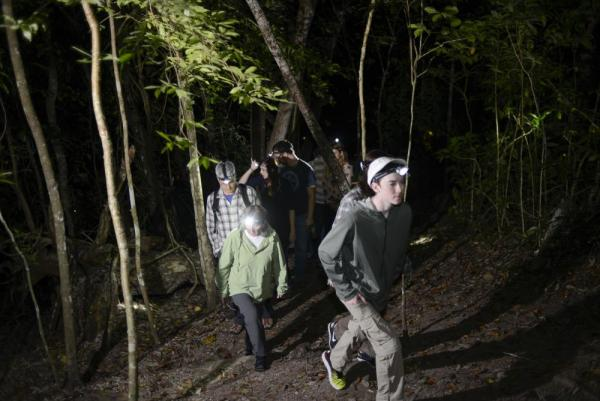 Night hikes offer visitors to Chaa Creek the opportunity to see more wildlife
