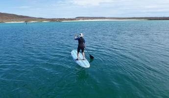 Traveler paddle boarding across the ocean.