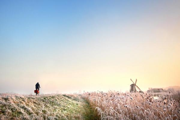 Bicyclist riding through the fields in Holland