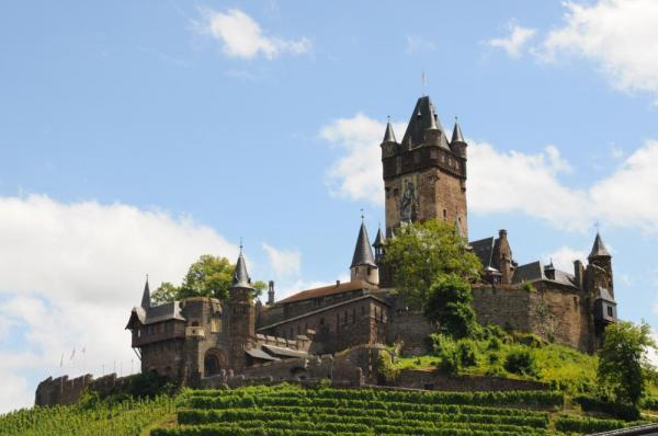 Castle surrounded by vineyards.