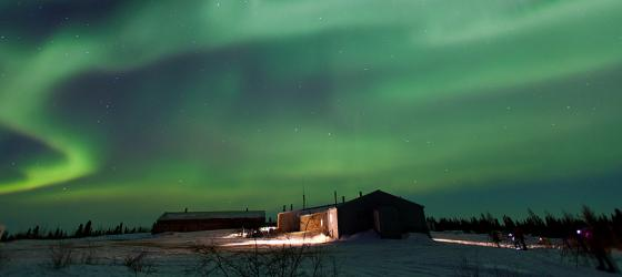 View the famed Northern Lights from Arctic Kingdom's Newborn Polar Bear Cub Lodge