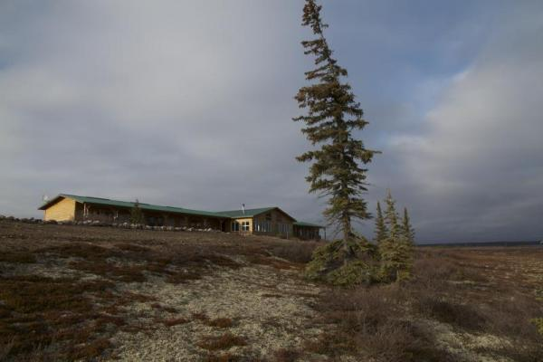 Arctic Kingdom's Caribou Lodge