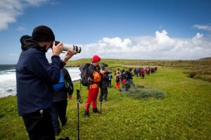 Travelers photographing the subantarctic landscape.