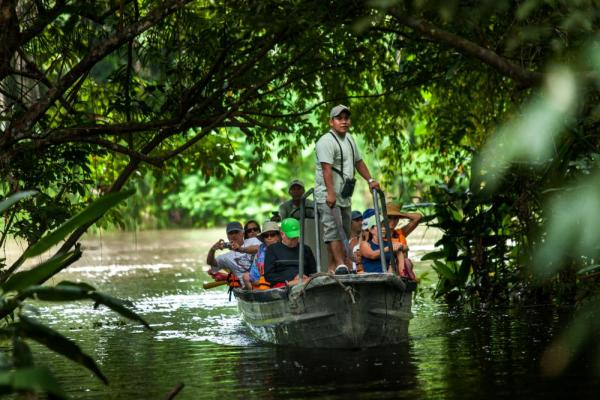 Explore the Amazon