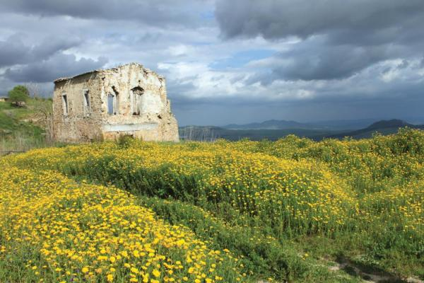 An abandoned house in Morgantina, Sicily.