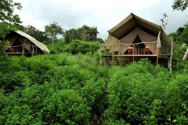 The luxury tents of Galapagos Safari Camp