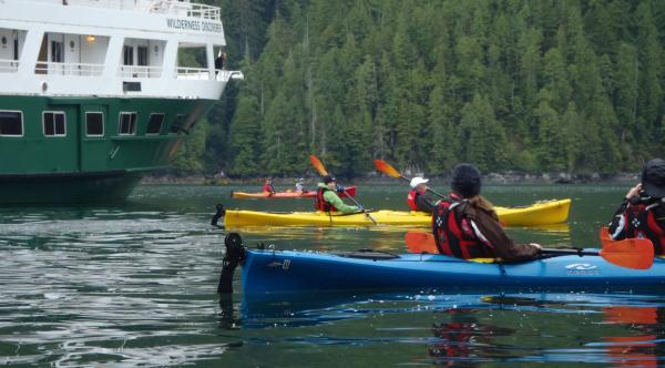 Travelers kayaking around the Wilderness Discoverer.