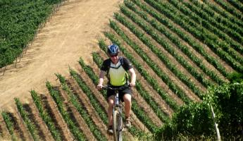 Exploring Chile's famous wine country on two wheels!