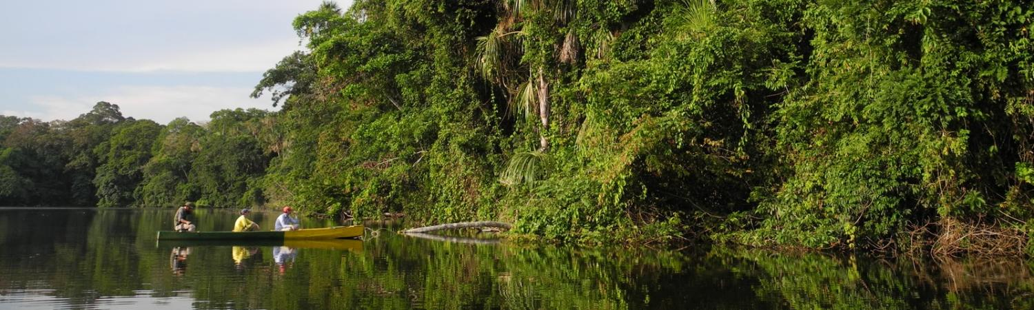 Exploring the Bolivian rainforest in a traditional dug out canoe at Chalalan Lodge