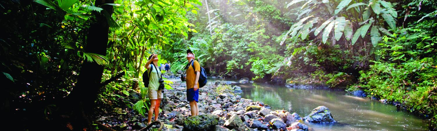 Trekking through Corcovado National Park in Costa Rica.