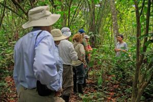 Getting a guided tour through the Amazon.