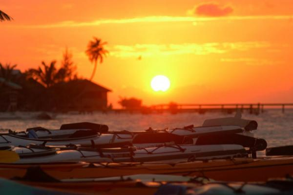 Kayaks at sunset on the Glover's Reef beach