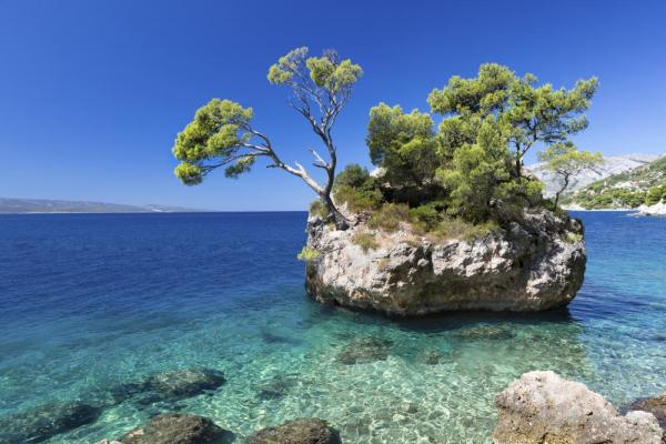 A small island sits out in the crystal clear waters of the sea.
