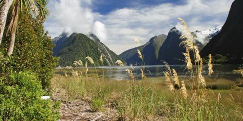 A beautiful view of Milford Sound.