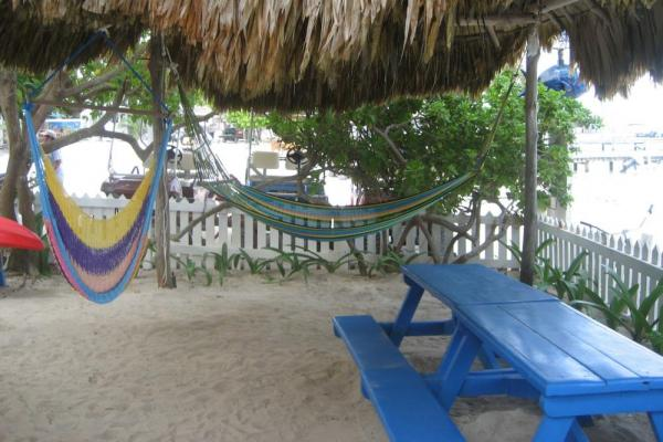 Relax with a book in one of Blue Tang Inn's beach-side hammocks