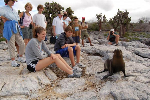 Travelers sit on the rocks and watch a seal in action.