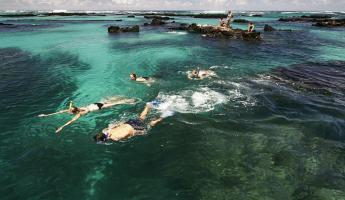 Snorkelers making their way through crystal clear waters.