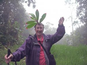 Queen of the Cloudforest