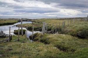 Wander the peaceful moors of Patagonia