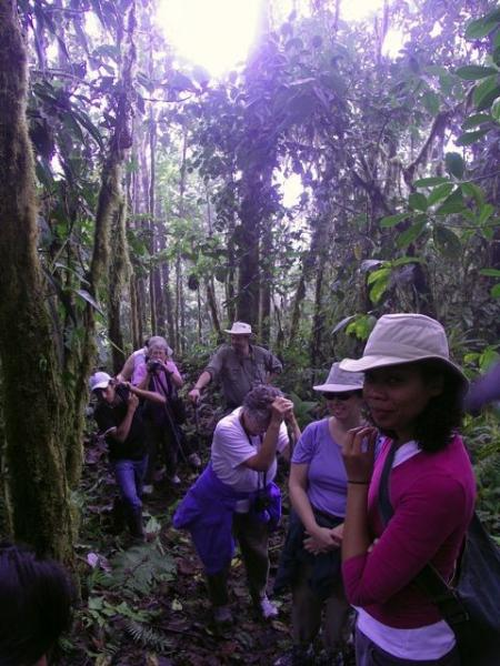 Hiking in the cloudforest