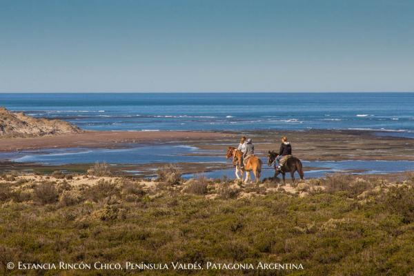 Enjoy a excursion on horseback.